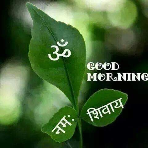 Good Morning With Thought Hindi Status Hindi Whatsapp Status